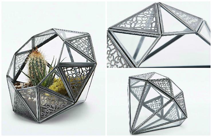 Terrarium effet diamant avec cactus