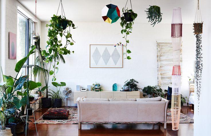 Oasis privée : Jardin suspendu ou terrarium