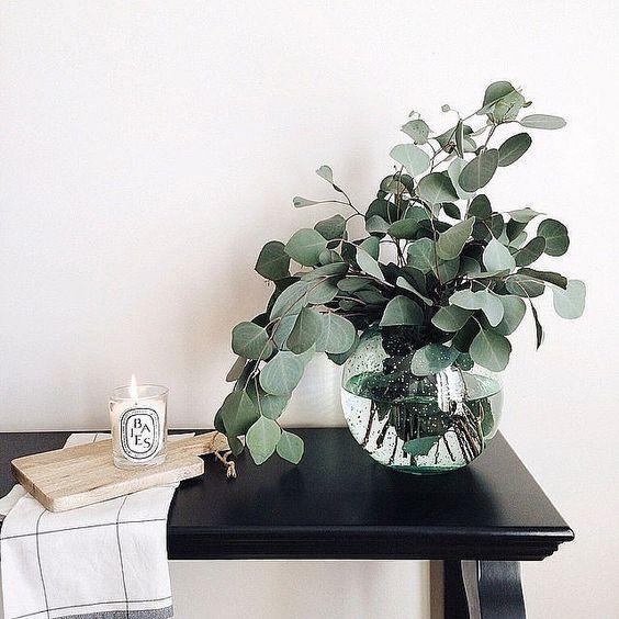 l 39 eucalyptus la touche green dans ma d co aventure d co. Black Bedroom Furniture Sets. Home Design Ideas