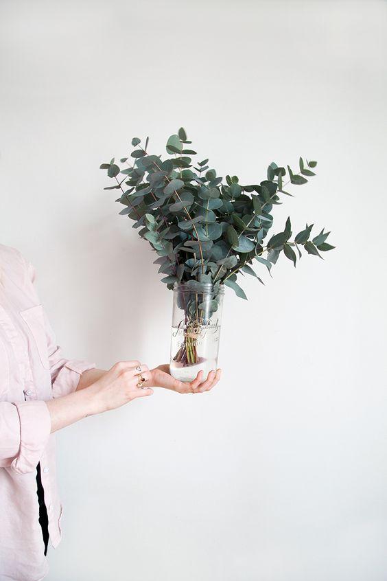 L'eucalyptus, la touche green dans ma déco