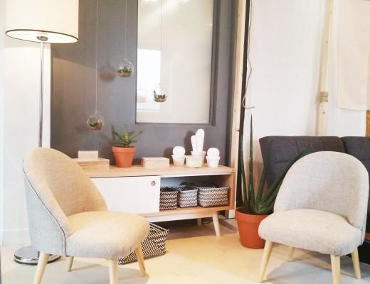 conforama-salon-fauteuil-scandinave-buffet-cactus