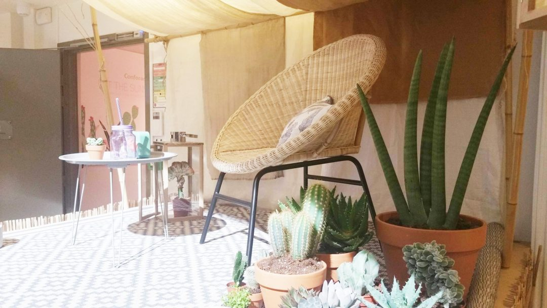 conforama-fauteuil-rotin-coussin-plumes-cactus-tapis-out-door-grapihque