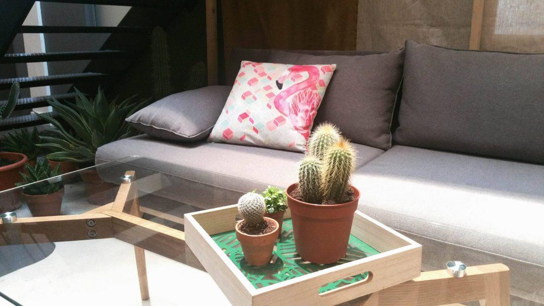 conforama-canape-coussin-flamand-rose-plateau-cactus-table-basse