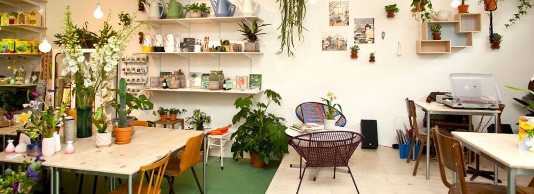 Boutique situé à Amsterdam. Wildernis est une boutique de fleurs mais pas que... Thé, café, gâteau, cours et ateliers... Wildernis s'est donnée la mission de faire entrer dans vos intérieurs, un max de verdure !