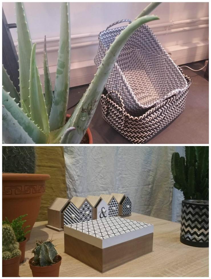 conforma-cactus-panier-osier-graphique-boite-scandinave-maison-rangement-etagere