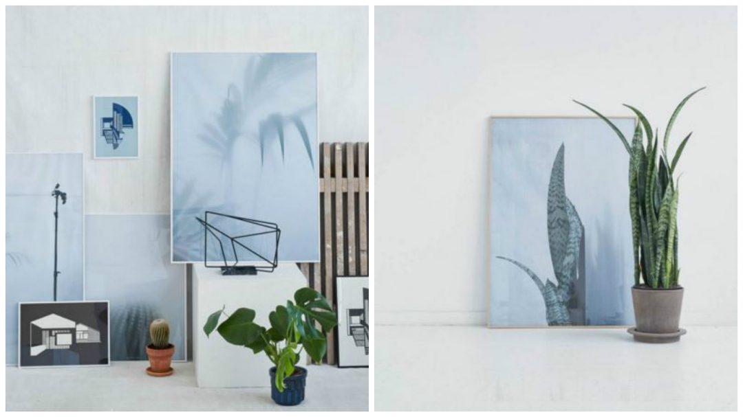 Ces affiches botaniques sont une collection de photographies qui capturent un moment de silence... Les plantes sont floues ou partiellement cachées par un écran de papier mince. Le sentiment est calme et brumeux et on adore !