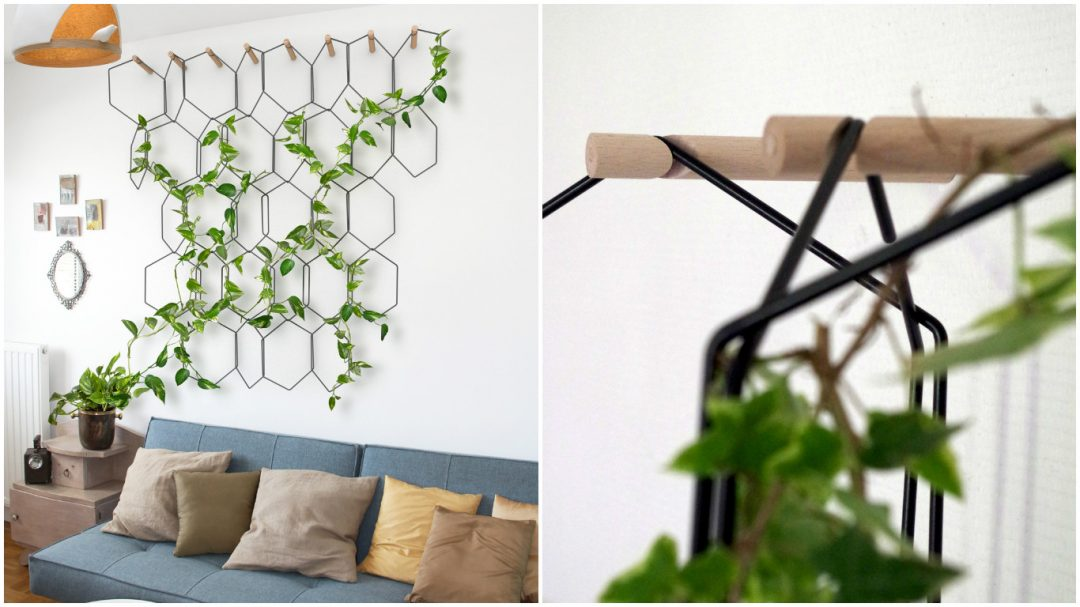 Quand la nature entre dans nos intérieurs grâce à cette treille suspendue, Anno du designer Fréderic Malphettes