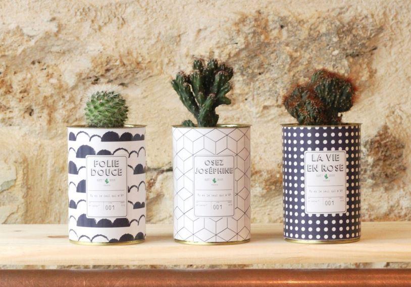 mini-cactus-boite-conserve-detournement-objet-noir-blanc-graphique-ay cactus