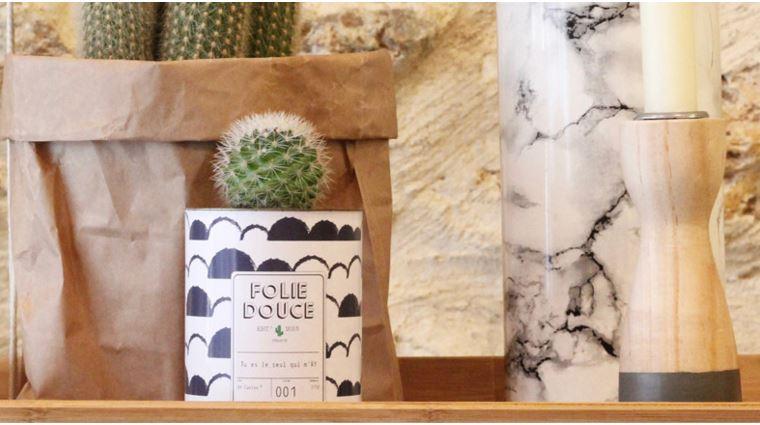 cactus graphique et personnalisable -aventure deco-ay cactus