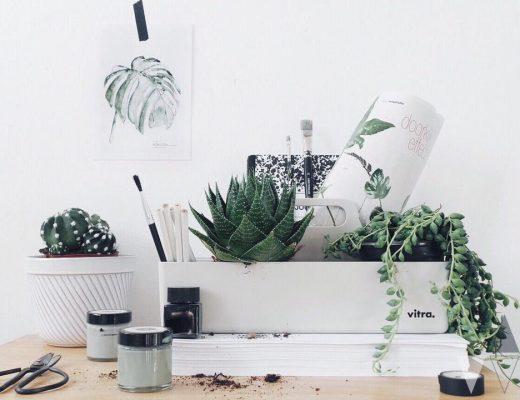 Où trouver des affiches végétales-poster-urban jungle-aventure deco