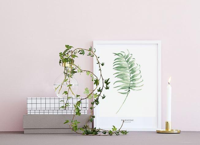 Où trouver des affiches végétales - Aventure Déco