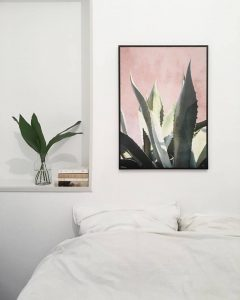 aloe-plants-on-pink-affiche-david-david-studio-aventuredeco